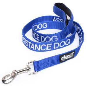 assistance_dog_medium_leash_2000x